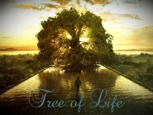 tree-of-life-pic-edited-300x225